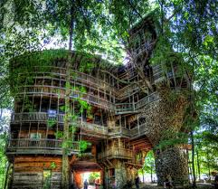 Cool Treehouses For Kids The Worlds Biggest Treehouse Tree Houses Treehouse And Awesome