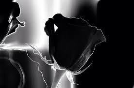 Unsere Trauersprüche Beileidsbekundungen Ergreifend Tiefsinnig