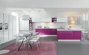 View in gallery Glossy purple kitchen cabinets