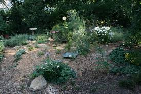what are good plants for rock gardens photo 9