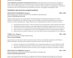 Executive Summary Resume Example Examples Personal Sales Manager