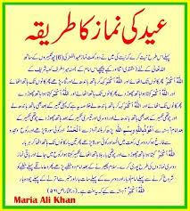 the cow essay in urdu mitosis essay the cow essay in urdu