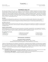 Business Resume Format Delectable Resume Format Word Sample Bilingual Consultant Financial Services