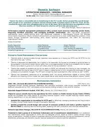 Simple Sales Manager Resume Examples 2011 Resume Samples Program