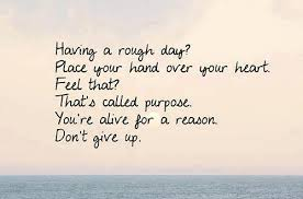 Quotes About Purpose Adorable Purpose Quotes Reason Quotes Give Up Quotes Motivational And