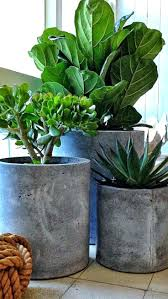 Indoor Planters Pots Best Concrete Pots Ideas On Concrete Planters  Architectures Modern Large Indoor Plant Pots