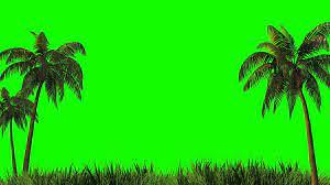 green background. Green screen ...