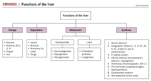 Cirrhosis Mcmaster Pathophysiology Review