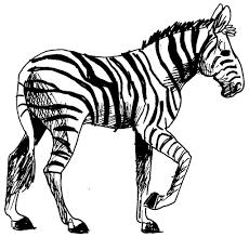 Dessin Coloriage Animal Zebre Education Environnement Nature