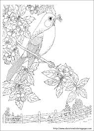 Nature Coloring Pages For Adults Free Printable Coloring Pages