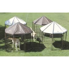 advantek pet gazebo modular outdoor dog kennel ideas