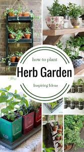 Small Picture 176 best herbsalad garden for deck images on Pinterest