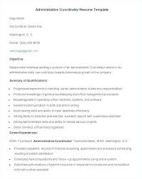 Resume Free Samples Download Best It Resume Examples Best Resume ...