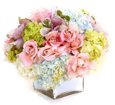pink roses blue and green hydrangeas