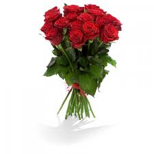 Beautiful red rose Rhodes length 60 cm, medium flower - Rozvoz květin do  90ti minut