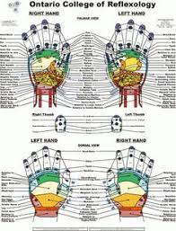 Foot Healing Chart Free Printable Reflexology Charts Body Healing Zones Orjun