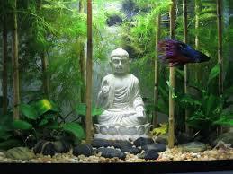 Decorative Betta Fish Bowls betta fish tank decoration ideas 60 Spiffy Pet Products 38