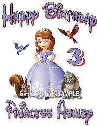 Disney Princess Age Chart New Personalized Disney Princess Sofia Sophia Birthday T Shirt Add Name And Age Ebay
