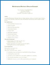 Work Experience Resume Template Skincense Co
