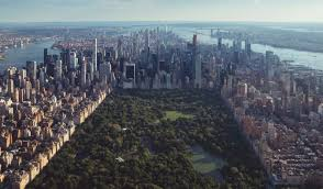 things to see and do in new york city