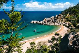 Image result for magnetic island