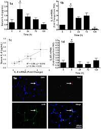 PLOS ONE: Association of Interleukin-6 Signalling with the Muscle Stem Cell  Response Following Muscle-Lengthening Contractions in Humans