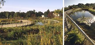 the oregon garden is a botanical garden that showcases a rich diversity of ornamental and native plants in colorful formal gardens natural landscape