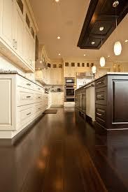 drop lighting fixtures. Stunning Drop Ceiling Lighting Fixtures Decorating Ideas Gallery In Kitchen Transitional Design