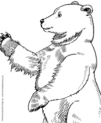 Small Picture Wild Animal Coloring Pages Large Standing Bear Coloring Page and