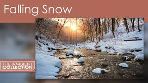 Falling Snow Dvd Relax With A Snow Scenes From The Alps With