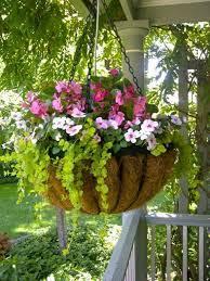 home design hanging plants outdoor hanging plants outdoor