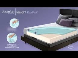 serta icomfort insight. Brilliant Insight Serta IComfort Insight Everfeel Mattress National Video To Icomfort A
