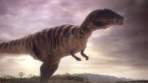 Image result for carcharodontosaurus