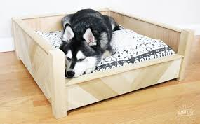 wooden dog bed those of you who have been following my journey know how obsessed i am with my dog titan he s my best bud and partner in crime