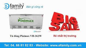Tủ đông Pinimax VH-362W