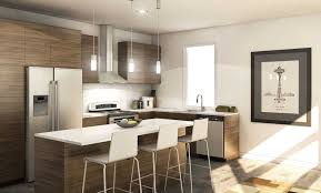 Small Condo Kitchen Seattle Condo Kitchen Design Small Medium Kitchen With Sleek