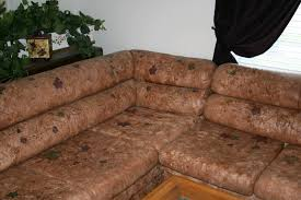 Old Couches Custome Hand Painted Leather And Fabric Couches