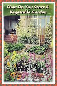 how do i start my vegetable garden