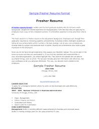Resume Writing Examples For Freshers Bongdaao Com