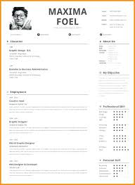 One Page Resume Format Unique Best One Page Resume Format 28 Doc E Page Resume Examples Examples E