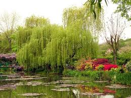 giverny monet s gardens private guided tour