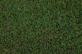 seamless grass texture game. Datk Green Astro Turf 3 Seamless Grass Texture Game