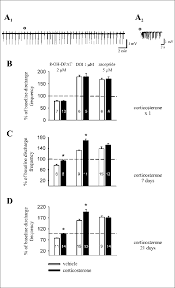 Rat Chart Spontaneus Bursting Activity In Disinhibited Rat Frontal