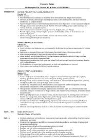 Mobile Resume Mobile Project Manager Resume Samples Velvet Jobs 5