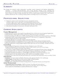 Professional Summary Example Template Design