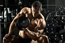 the ultimate arms workout the best arm