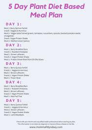 2 Week Vegetarian Keto Diet Plan Problem Solving Veg Protein
