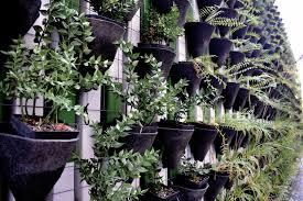 how to make a vertical garden. Exellent Make How To Hang A Create Vertical Garden Inside How To Make A Vertical Garden