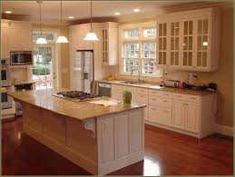 glass kitchen cabinet doors home depot inspirational replacement kitchen cabinets extraordinary replacement kitchen