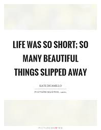 Beautiful Things In Life Quotes Best Of Life Was So Short So Many Beautiful Things Slipped Away Picture